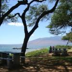 Kamaole lll Beach Park